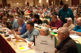 synod assembly voting